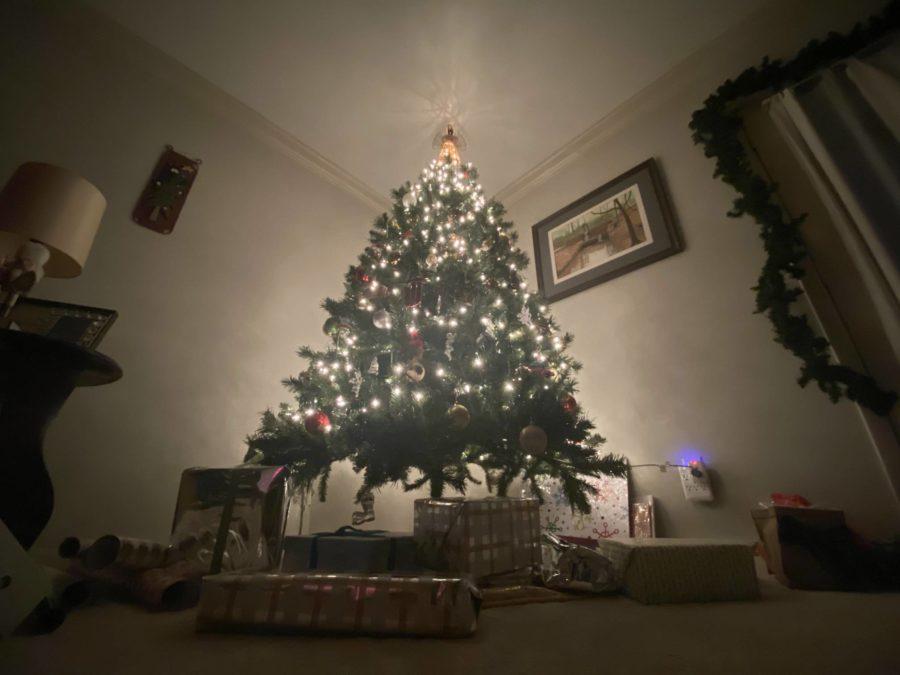 Holiday+season+with+COVID-19
